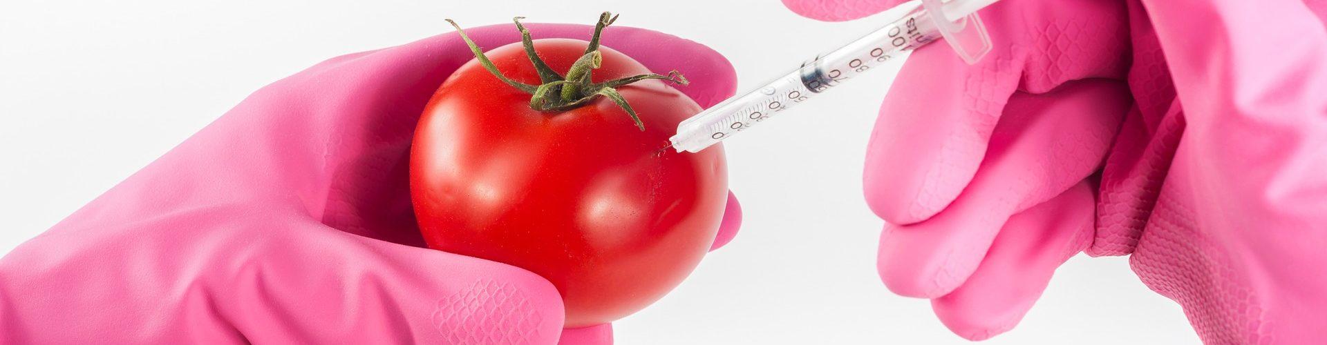 Parliamo di OGM