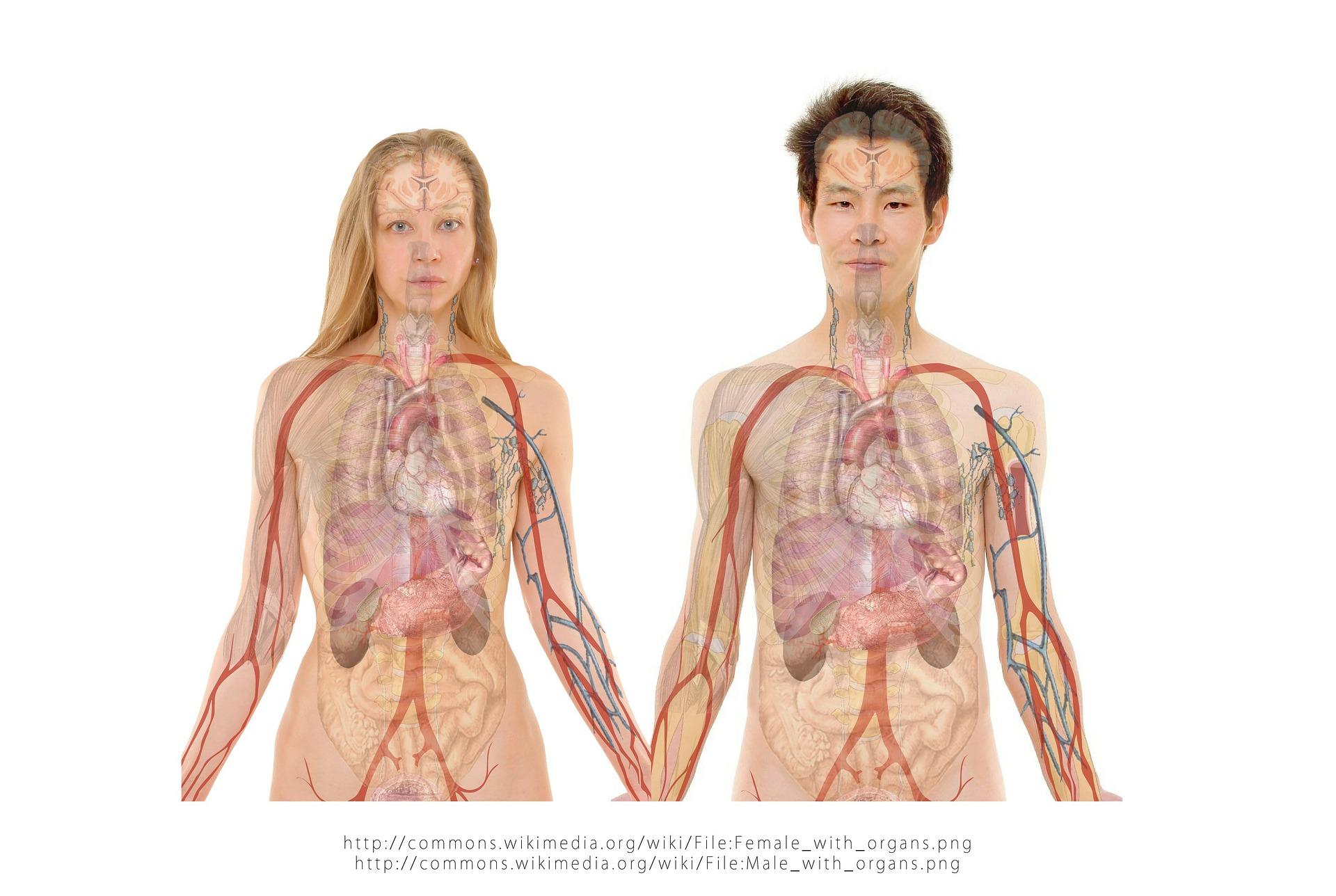 Malattia da reflusso gastroesofageo: raccomandazioni dietetiche e regole comportamentali