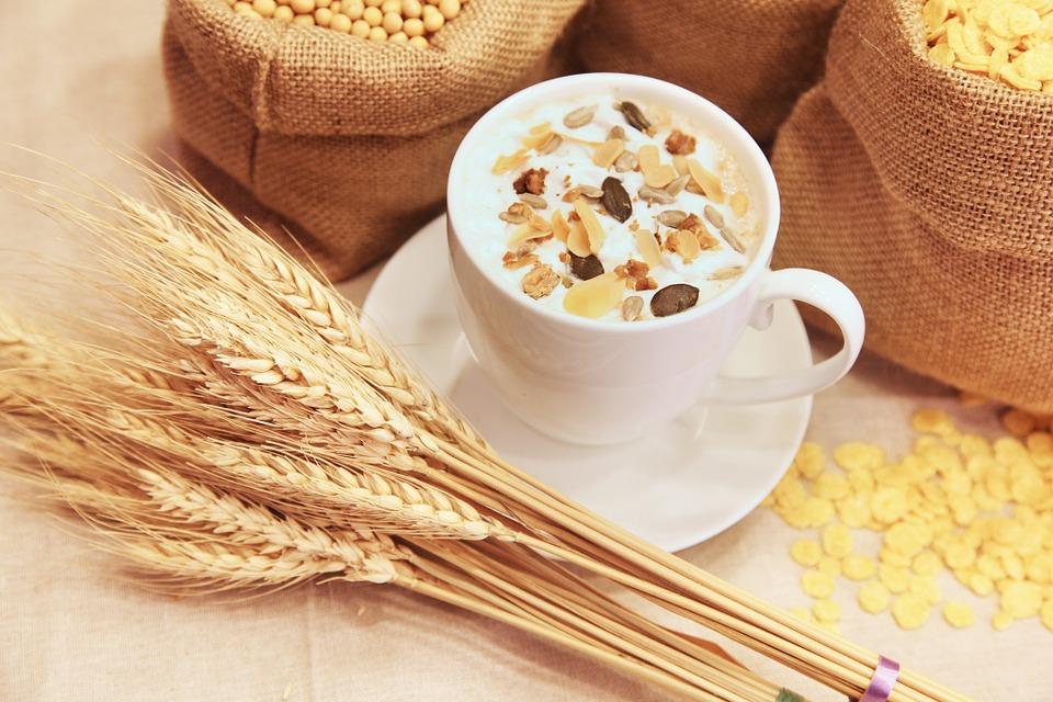 Alla scoperta dei cereali: conosciamo meglio l'avena