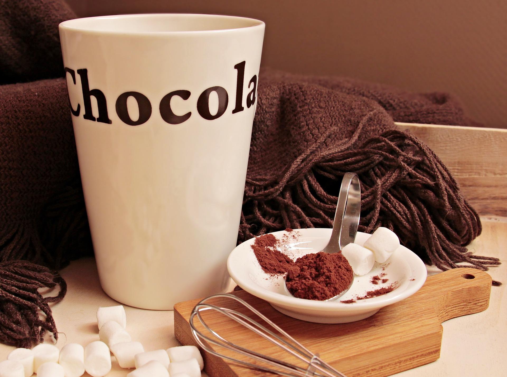 I flavonoli del cacao e la neurodegenerazione