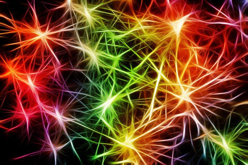 """Il cambiamento, Il cambiamento non ha età: le nostre cellule neuronali sono guidate da una """"danza plastica"""" che dura tutta la vita"""