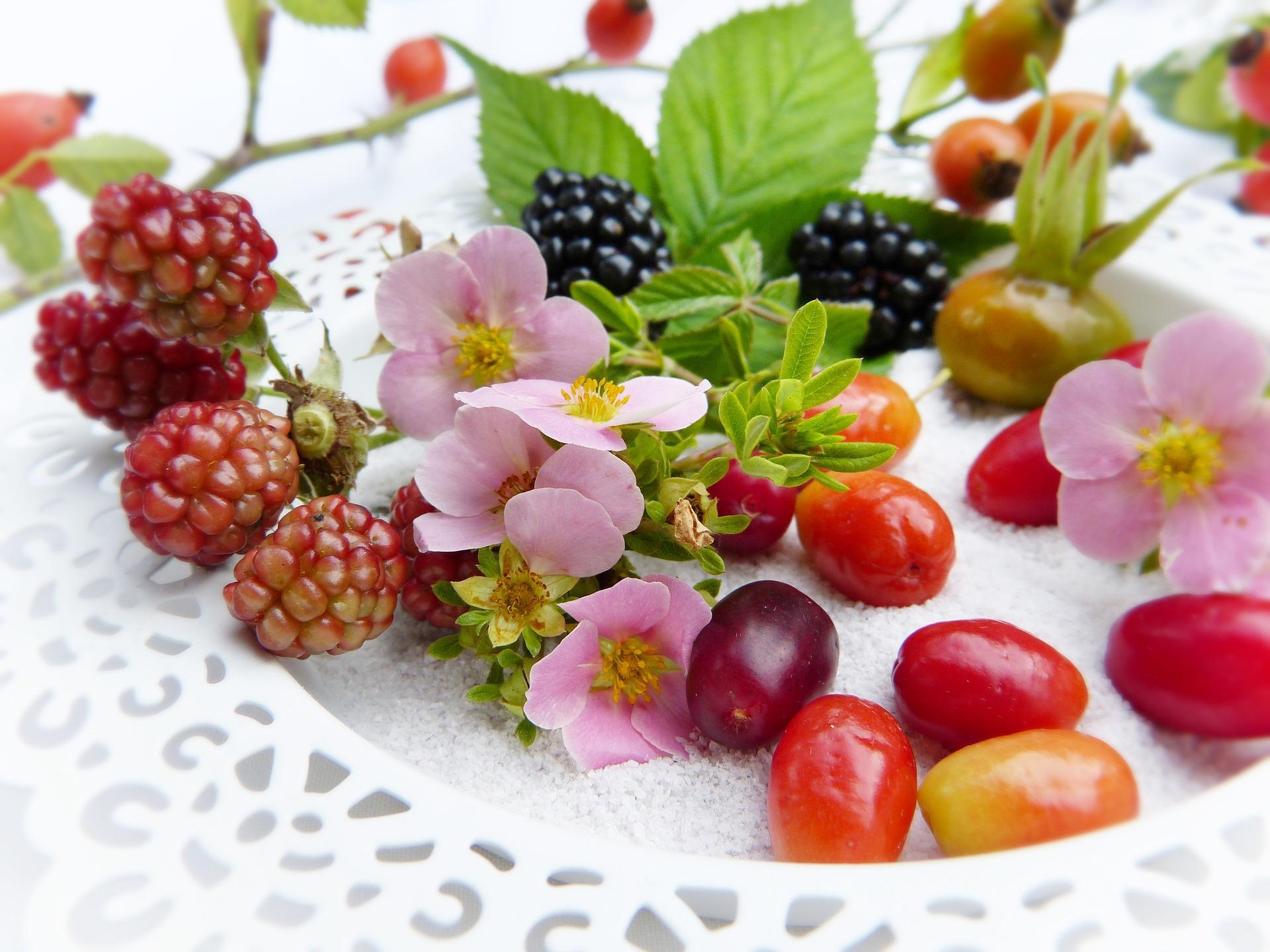 Malattie metaboliche e dieta macrobiotica Ma-Pi 2