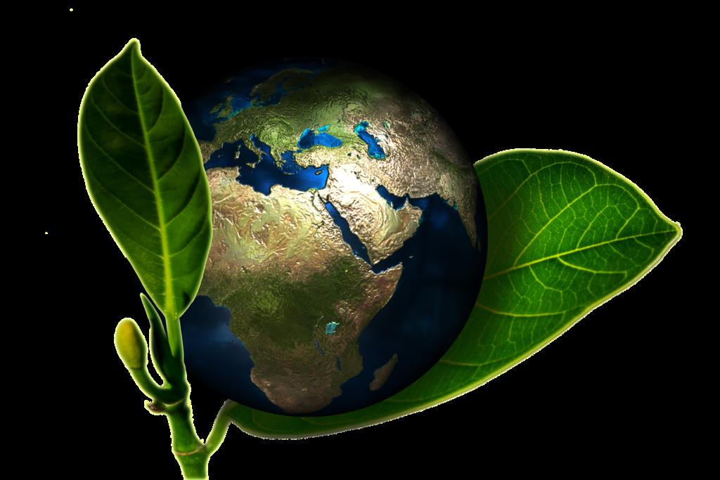 Sostenibilità, Mangiar sano, un atto sostenibile per l'ambiente