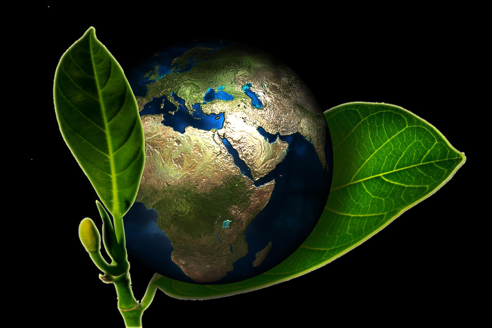 Mangiar sano, un atto sostenibile per l'ambiente