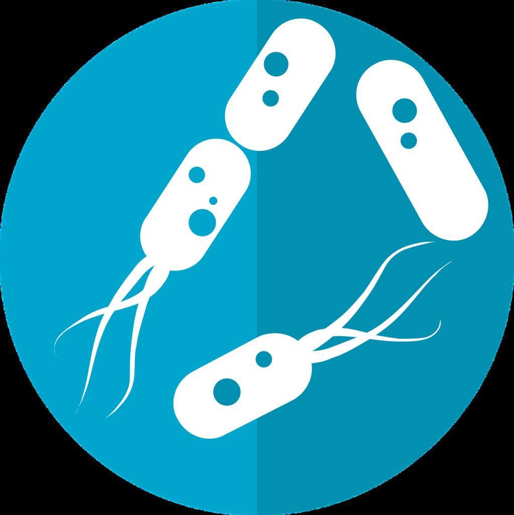 Nutrizionista, Il ruolo del Nutrizionista nei confronti del Microbiota