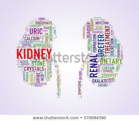Ruolo della dieta nell'insufficienza renale cronica