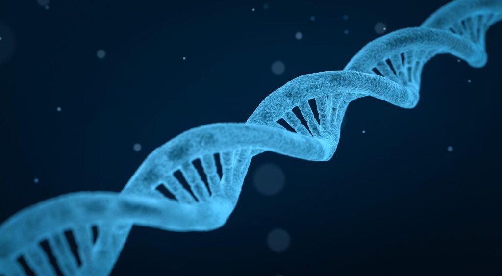 La genetica e l'espressione genica, La genetica e l'espressione genica