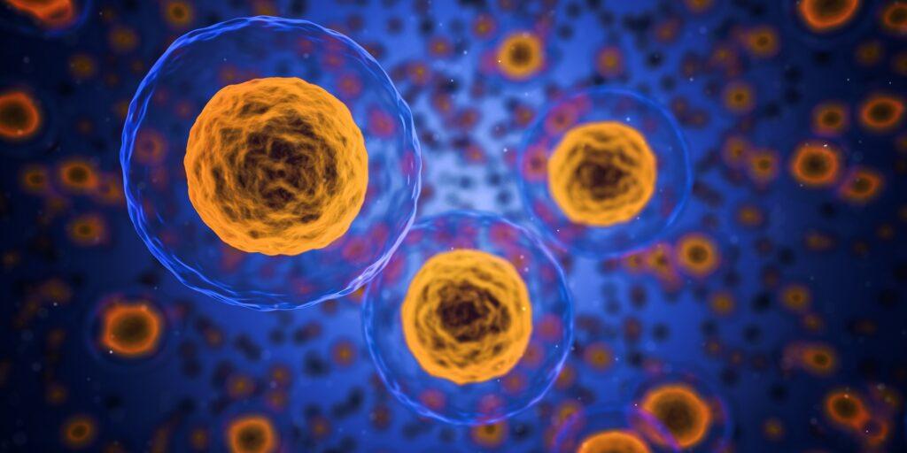 , La Dieta Chetogena: Ottima Arma contro il Virus Influenzale
