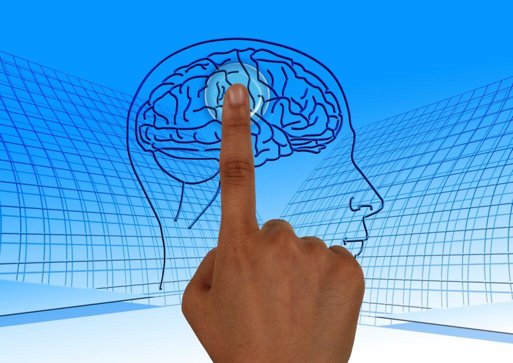 Dietro i nostri processi decisionali ci sono forze fisiologiche di cui non siamo nemmeno consapevoli., Ma cosa ti dice il cervello?