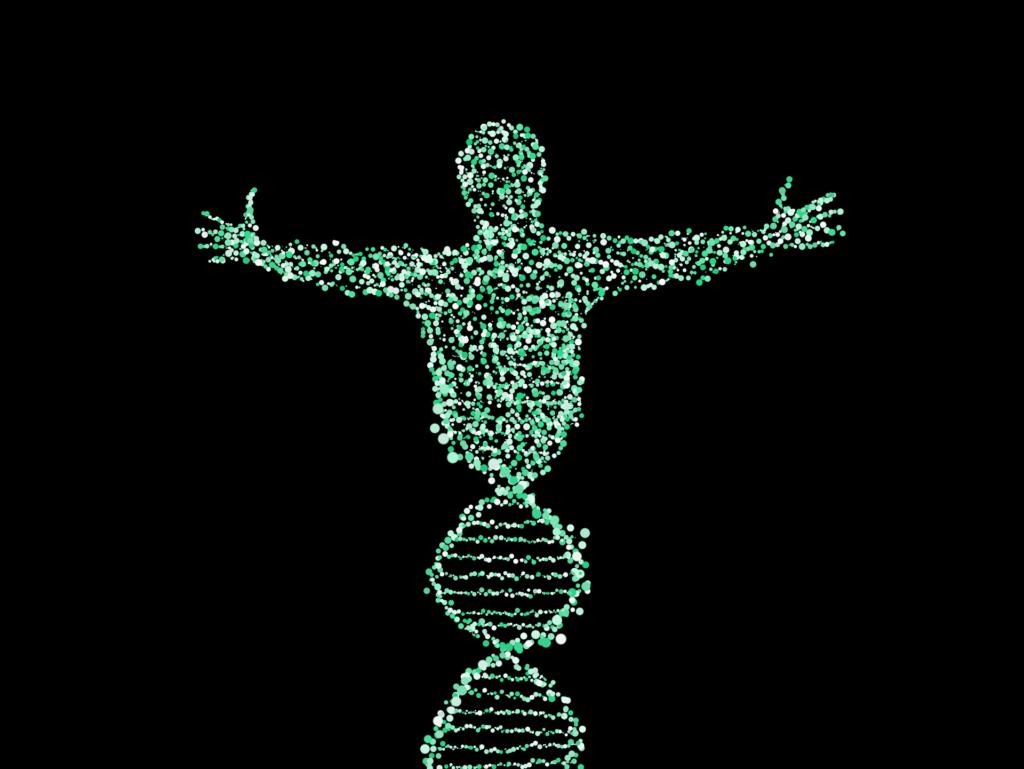 riproduzione, Partenogenesi: successo riproduttivo o strategia di sopravvivenza?
