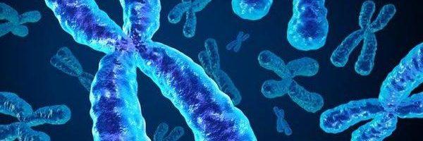 Il DNA ha un asso nella manica: il cromosoma X