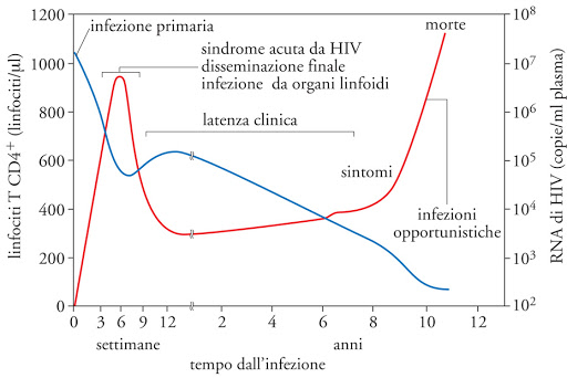 , Immunodeficienza acquisita da HIV