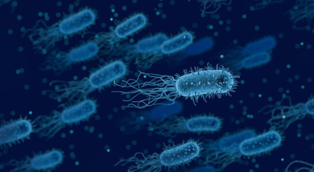 , Farmaci antimicrobici e come usarli… al meglio!