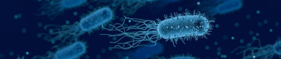 Farmaci antimicrobici e come usarli… al meglio!