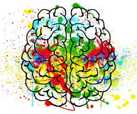 Nutraceutici e salute del Sistema Nervoso