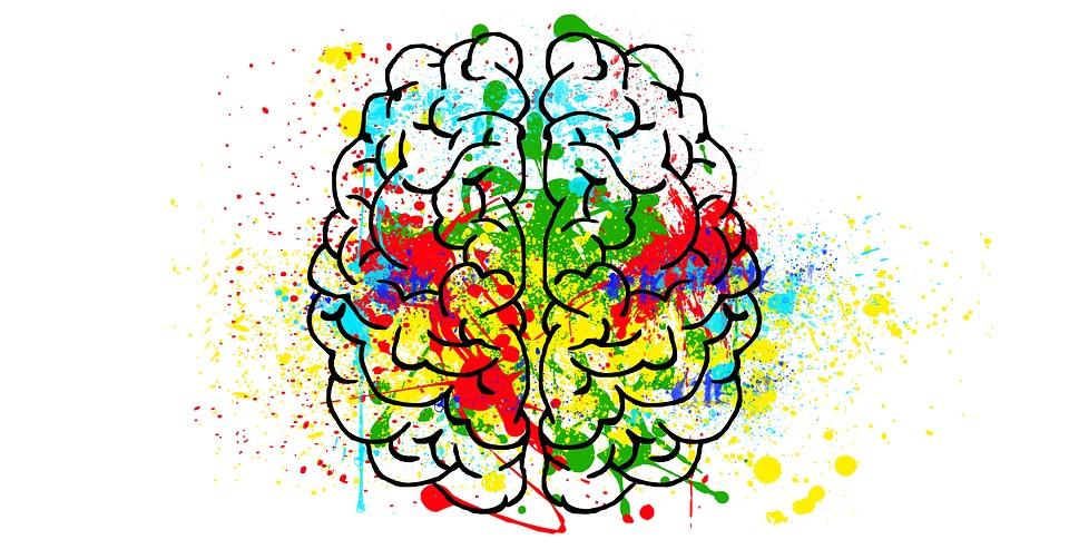 , Nutraceutici e salute del Sistema Nervoso